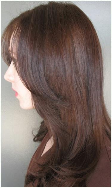 Rich chocolate brown hair bob