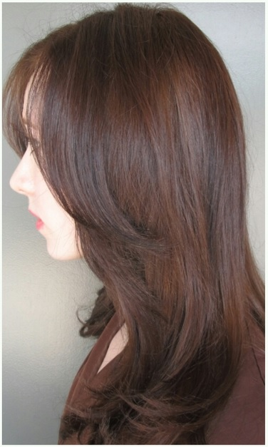 sable hair color brown hair color chart brown hair color shades sable ...