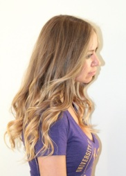 light brown highlights and extensions