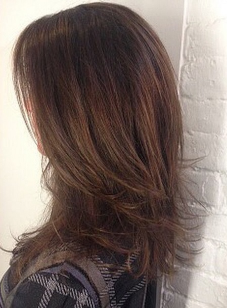 soft brunette highlights