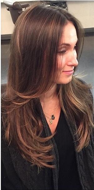 soft brunette highlights