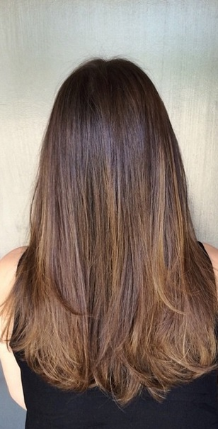rich shiny brunette hair color