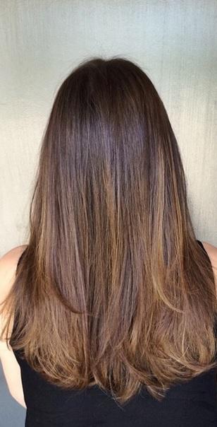 rich shiny brunette hair color