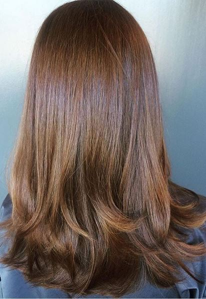 rich and shiny brunette hair color